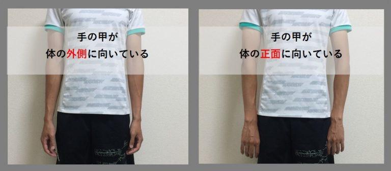 手の向き.JPG